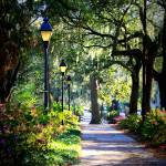 """Sunshine on Savannah Sidewalk"" by Groecar"