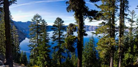 2803oregon.craterlake.throughtrees