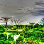 """Tropic Garden Series, Singapore"" by sghomedeco"