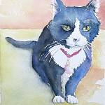 """Tux the cat"" by lindahaile"