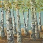 """""""BIRCH TREE FOREST"""" by rebeccahauschild"""