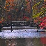 """Fall Pinelands Foot Bridge"" by JamesCalore"