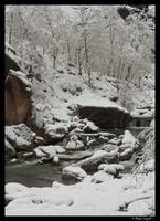 The Narrows in winter