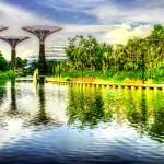 """Garden by the Bay - Garden Singapore Series"" by sghomedeco"