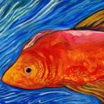 """""""Goldfishjpg"""" by ACastelli"""