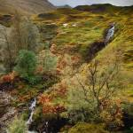 """Autumn in Glencoe"" by PadgettGallery"