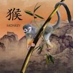 """""""Year of the Monkey"""" by spadecaller"""