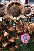salvage Yard Flowers