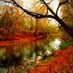 """Antietam Creek"" by manymuses"