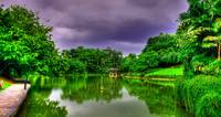 Urban Singapore- Botanic Garden Series