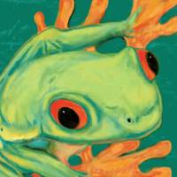 frog Stylised Pop Art Drawing Potrait Poster