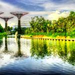 """Green Series - Garden Singapore 2013"" by sghomedeco"