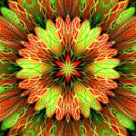 """Christmas Flower Abstract"" by ecolosimo"