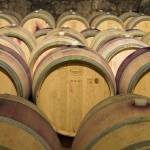 """Oak Wine Barrels, Italy"" by petrsvarc"