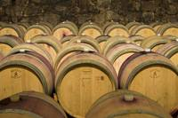 Oak Barrels in Wine Cellar in Italy