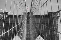 Brooklyn Bridge Color Pop
