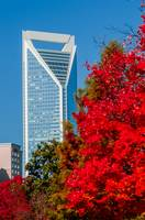 charlotte city skyline autumn season