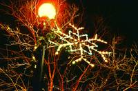 Decorated Street Lamp