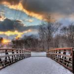 """Winterwalk HDR"" by ayseselen"