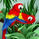 """Two Red Parrots"" by waterart"
