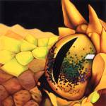 """Eyelash Viper"" by Kristin-Serafini"