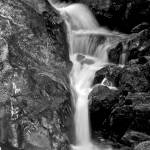 """Forest Waterfall"" by JimLipschutz"