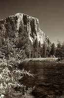 El Capitan and Merced River