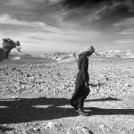 """""""Bedouin with His Camels"""" by JimLipschutz"""
