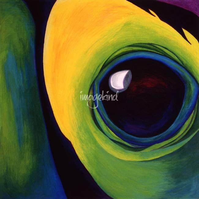 """Keel Billed Toucan """""""
