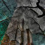 """Manhattan Skyscraper Abstract"" by jeffwatts"