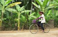 Cyclist in Vietnamese Countryside, Mekong Delta