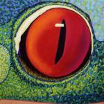 """Red-Eyed Tree Frog"" by Kristin-Serafini"