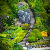 """Butchart Gardens Stairs"" by Inge Johnsson"