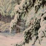 """""""Evergreens In White"""" by barrydebaun"""