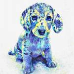 """blue dappled dachshund"" by pietrastone"