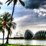 """Fantastic  City Singapore - Garden by the Bay Spec"" by sghomedeco"