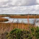 """Salt Marsh Panorama"" by WrightFineArt"