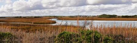 Salt Marsh Panorama