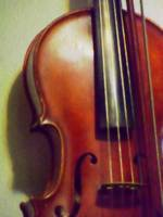 The Viola on the Wall