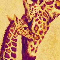 gold and red giraffes Art Prints & Posters by Jane Schnetlage