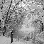 """Snowy Pond"" by WildAboutNaturePhotography"
