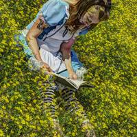 Story Time for Alice Art Prints & Posters by Stephen Durrenberger
