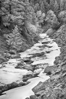Frozen Boulder Creek Boulder Canyon Colorado BW