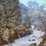 """Boulder Creek Winter Wonderland"" by lightningman"