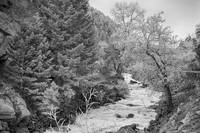 Boulder Creek Winter Wonderland Black and White