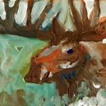 """Moose Study"" by SeanFineArt"