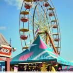 """Raleigh At The State Fair"" by WrightFineArt"