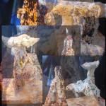 """Rock Forest"" by krishnaswamy"