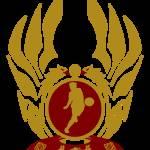 """The Republic of Vietnam Football"" by Euvari"