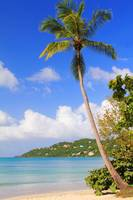 Magens Bay Beach, St. Thomas USVI